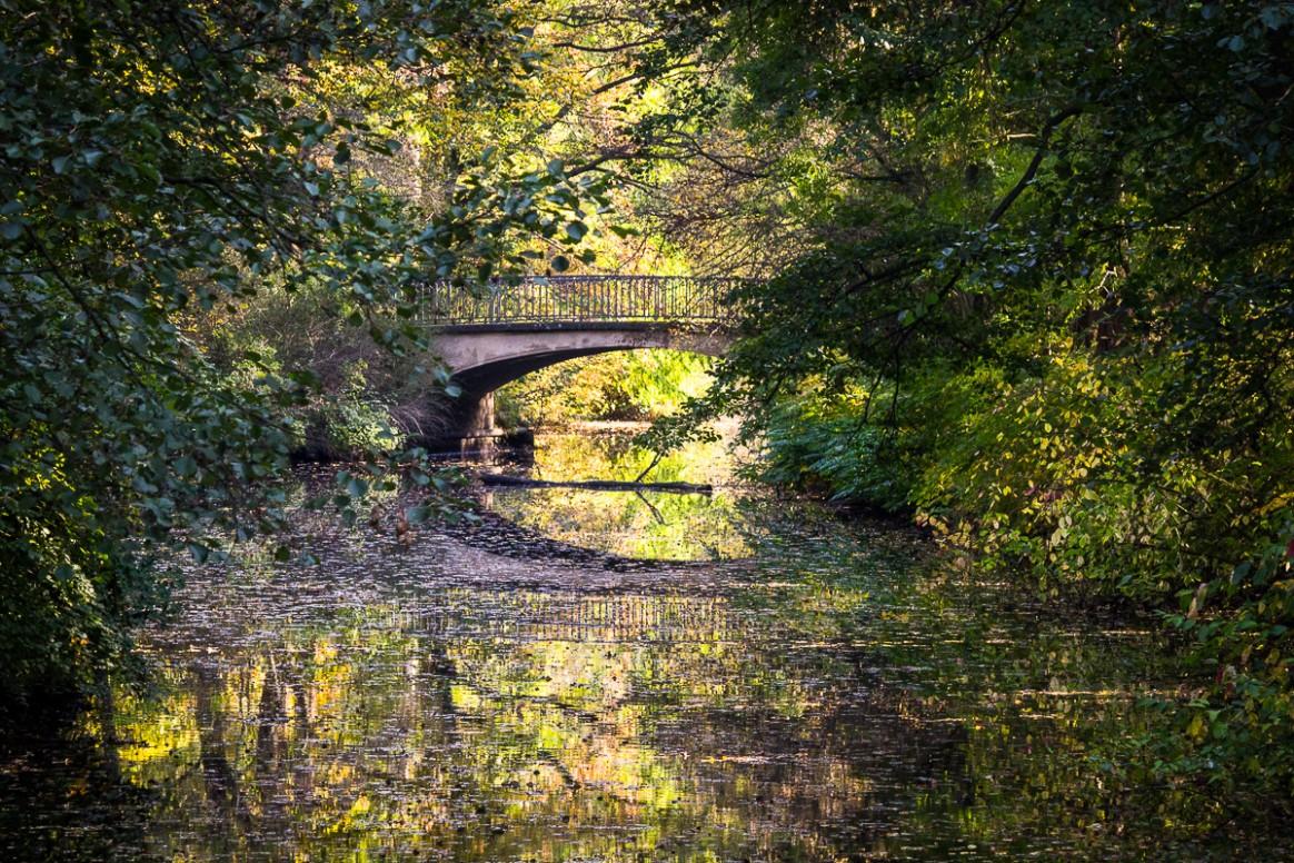 Bridge over a small river in Tiergarten Berlin